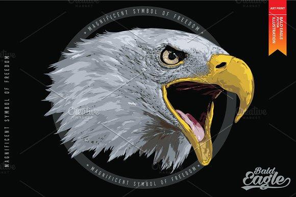 BALD EAGLE - Vector illustration