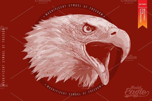 Bald Eagle Vector Illustration Illustrations Creative Market