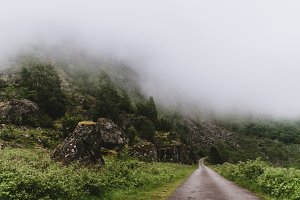 Road up into the foggy Mountains