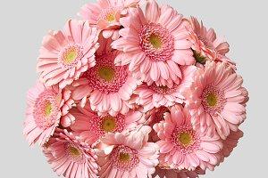 close-up of sphere wedding bouquet of gerberas