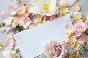 Composition of flowers petals and white post card on grey background