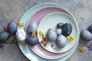 Blue Easter eggs in a row with dry yellow daffodils on blue plates