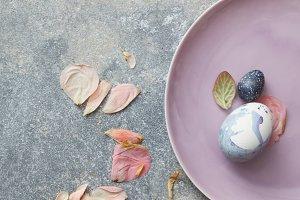 Blue easter eggs with dried petals on concrete gray background