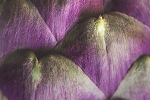 Artichoke texture background