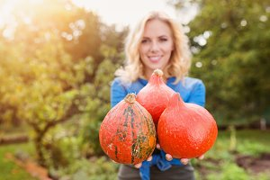 Beautiful woman harvesting pumpkins
