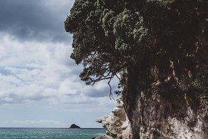 Sandy Beach of New Zealand