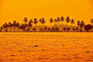 sunset scene of backwaters Kerala