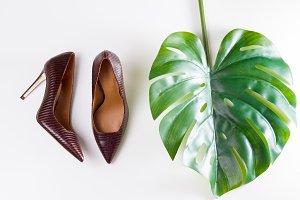Pair of elegant high heel shoes