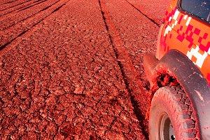 Tire tracks on a dry lake