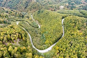 Curvy road in green forest, low hills. Slovakia. Autumn nature.