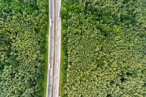 Aerial view of highway, traffic jam, green forest, Netherlands