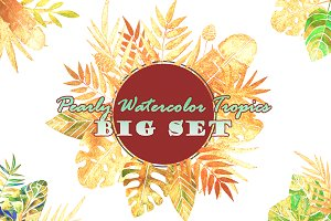SET with Pearly Watercolor Tropics