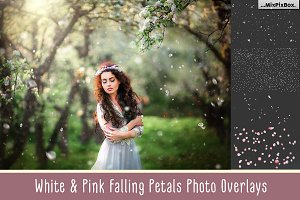 White and Pink Petals Overlays