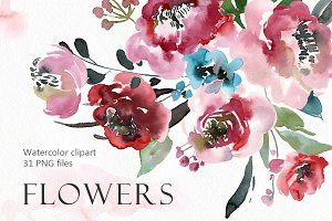 Watercolor peony, roses flowers PNG