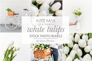 White Tulips Stock Photo Bundle