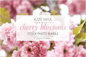Cherry Blossoms Stock Photo Bundle