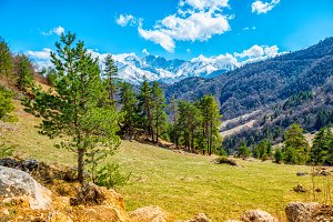 Caucasus mountains with evergreen