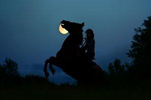 Fantasy horse rider under moon