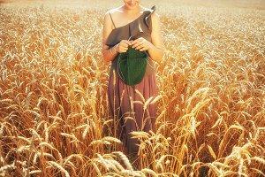 Woman knits in field of golden wheat
