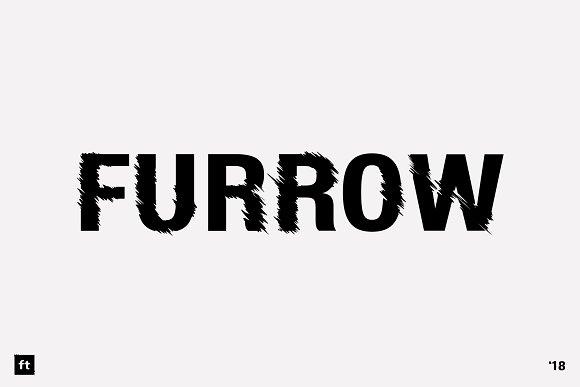 Furrow Regular Oblique
