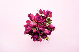 Bunch of magenta roses