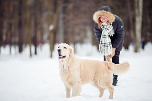 Picture of woman on walk with labrador in snowy park