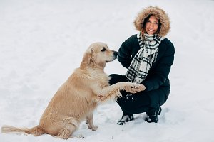Picture of labrador giving paw to woman in black jacket on winter
