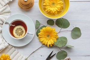 Tea and Daisies