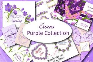 Crocus. Purple Collection