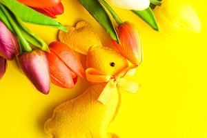 Easter concept with tulips