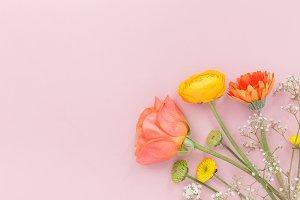 Gentle floral composition on pink