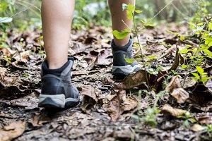 Trekking in a forest