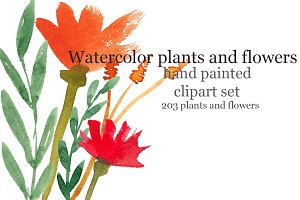 Watercolor flowers smears, raster