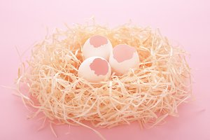 Hatched Easter eggs in the nest