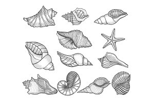 Hand drawn vector illustrations