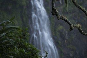 Morans Falls in Tamborine Mountains.