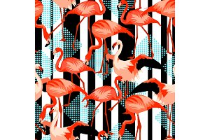 Seamless pattern with flamingo. Tropical bright abstract birds