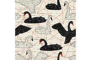 Seamless pattern with floating black and white swans. Hand drawn birds