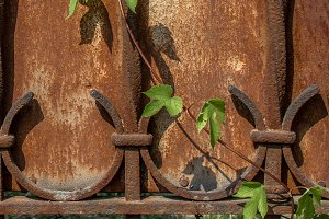 Nature and rust