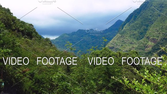 Landscape Nature Tropical Island With Rocky Mountains Overgrown Dense Green Jungle Tree Palm And Water Of Sea Ocean
