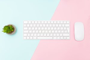 Desk pastel color. Flat lay