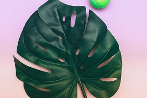palm leaf and green ball