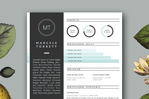 Modern CV Template for Word