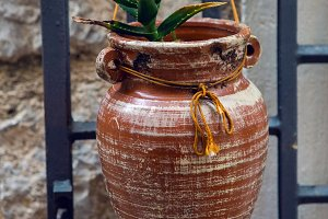 pot is conical in shape with aloe is hanging on the wall in Kotor