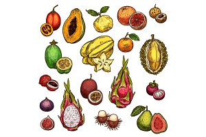 Set of ripe exotic fruits