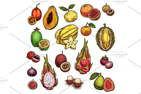 Set Of Ripe Exotic Fruits