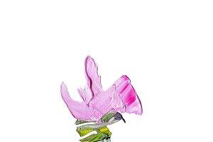 Hand painted modern style purple flower