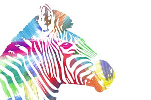 Zebra profile painted in watercolor