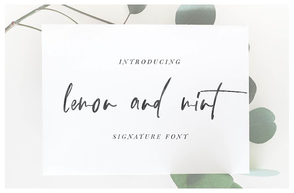 105 in 1 | Hand-Lettered Font Bundle in Script Fonts - product preview 11