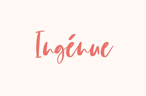 105 in 1 | Hand-Lettered Font Bundle in Script Fonts - product preview 26